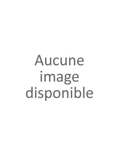 Pendentif fée de face avec oxyde de zirconium teinté